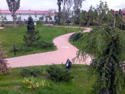 Parc. Poza 352