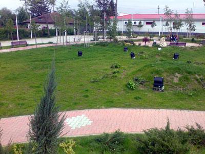 Parc. Poza 353
