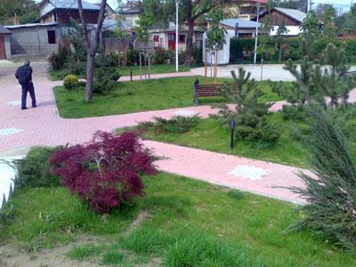 Parc. Poza 354