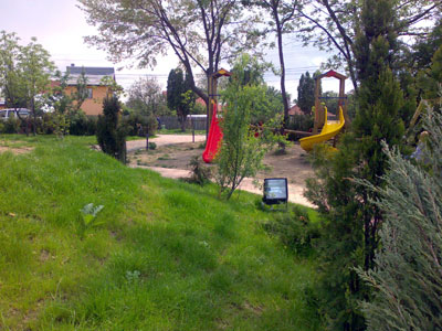 Parc. Poza 355