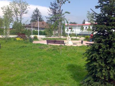 Parc. Poza 358