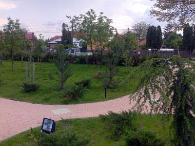 Parc. Poza 351