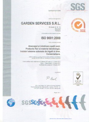 Certificat ISO 9001. Poza 5